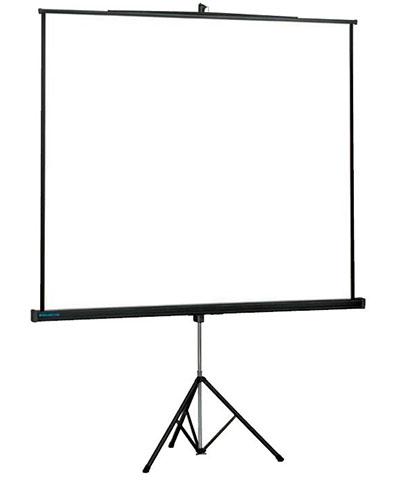 Проекционный экран_Projecta Professional 213x213 Matte White (48754)