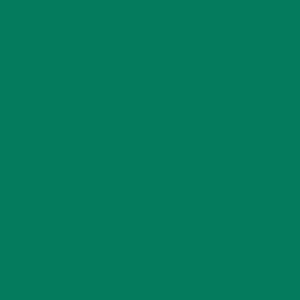 Термопленка sports film Green 400 cad u37 usb studio recording microphone