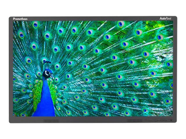 Интерактивная панель_Интерактивный дисплей ActivPanel Touch 65 (674028)