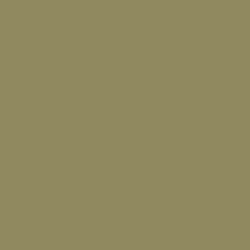 Краска RUCO T-20 4051