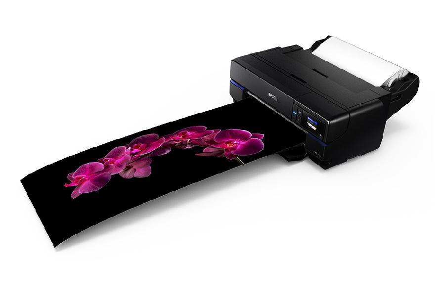 Epson SureColor SC-P800 (Roll Unit Promo) принтер epson surecolor sc p600