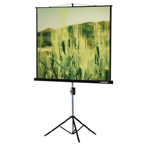 Проекционный экран_Lumien Master View 127x127 MW FiberGlass (LMV-100101) Компания ForOffice 3528.000