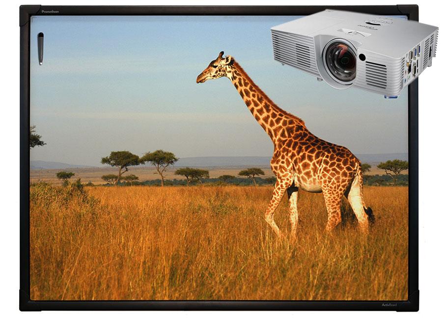 """Интерактивная доска Touch 78"""" 10 касаний, ПО ActivInspire в комплекте с проектором Optoma X316ST и настенным креплением интерактивная система activboard 578 pro adjustable est 670776"""