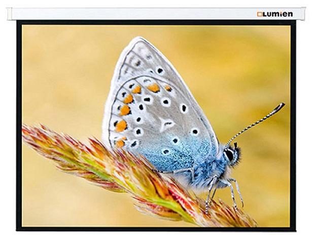 Lumien Master Picture 259х400 см (LMP-100126) lumien lmc 100126