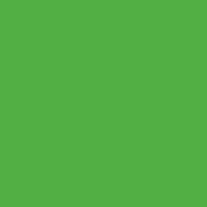 Термопленка CAD-CUT sports film FLUO Green 401 термопленка cad cut sports film cream 005