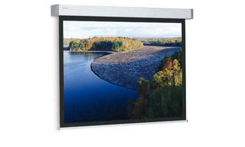 Projecta Elpro Electrol 173x300 см (10191910) экраны для проекторов projecta compact electrol 183х240 см 113 matte white с э