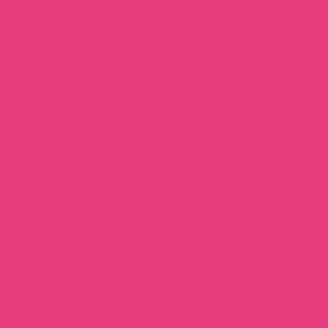 Термопленка CAD-CUT sports film FLUO Pink 241 термопленка cad cut sports film cream 005