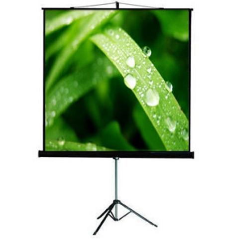 Проекционный экран_ViewScreen Clamp Pro 171x128