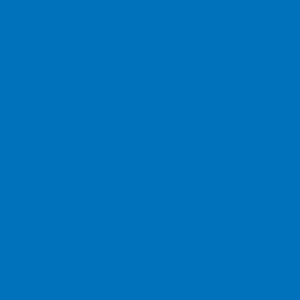 Термотрансферная плёнка неоновый-голубой АСЕ-301 (035) Компания ForOffice 279.000