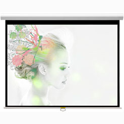 Проекционный экран_Classic Solution Premier Orion II 244x244 (4:3)