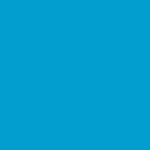 Термопленка CAD-CUT sports film FLUO Blue 301 термопленка cad cut sports film cream 005