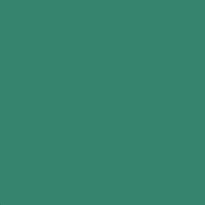 Пленка для термопереноса на ткань Poli-Flex Premium Green 404