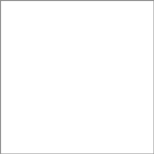 Пленка для термопереноса на ткань Poli-Flock White 501