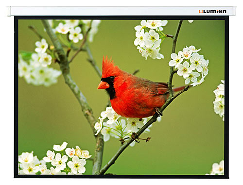 Проекционный экран Lumien Master Picture 117x200 MW FiberGlass (LMP-100121)