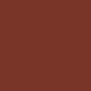 Термотрансферная плёнка коричневая АСЕ-301 (013) Компания ForOffice 279.000