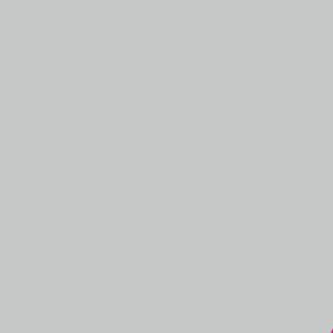 Пленка для термопереноса на ткань TW серая 0024