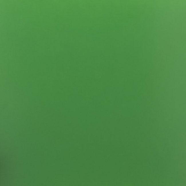 Пленка для термопереноса на ткань 70 светло-зеленая 425 кисточка avtomark светло зеленая 360 0 02