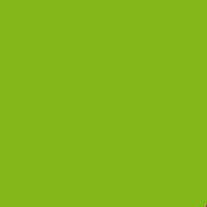 Пленка для термопереноса на ткань   кислотно-зеленая 531