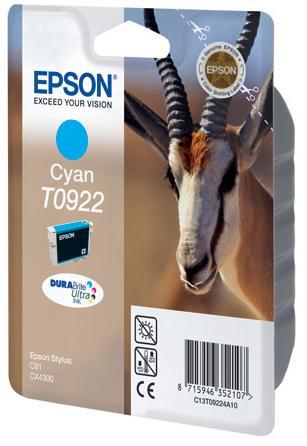 Картридж Epson C13T10824A10