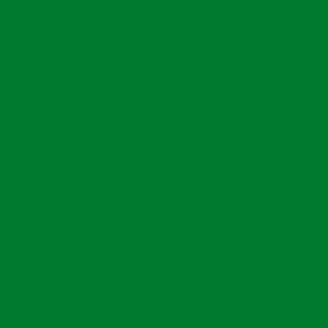 Термотрансферная плёнка зеленая АСЕ-301 (011) Компания ForOffice 279.000