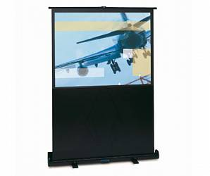 Projecta LiteScreen 128x168 Matte White (10530157)